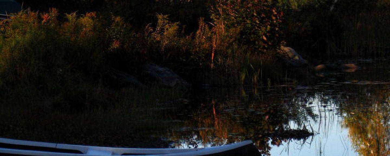 Park Stanowy Jeziora Lowell, Londonderry, Vermont, Stany Zjednoczone