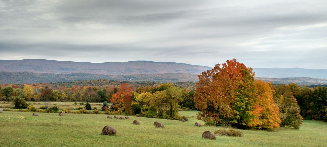 Shaftsbury, VT, USA