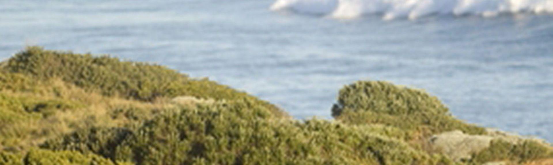 Johanna Beach, Johanna, Victoria, Australien