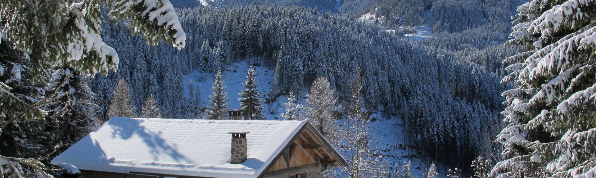 Varena, Trento, Trentino-Alto Adige/South Tyrol, Italy