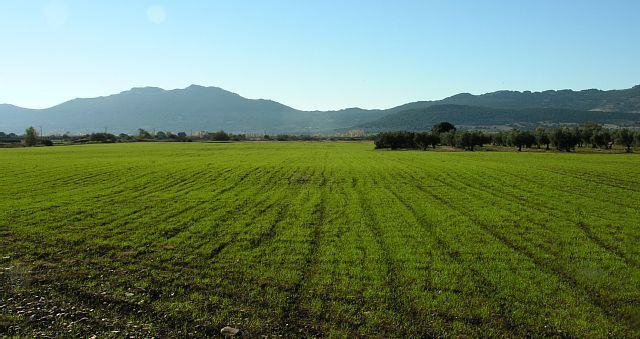 Urda, Castilla-La Mancha, España