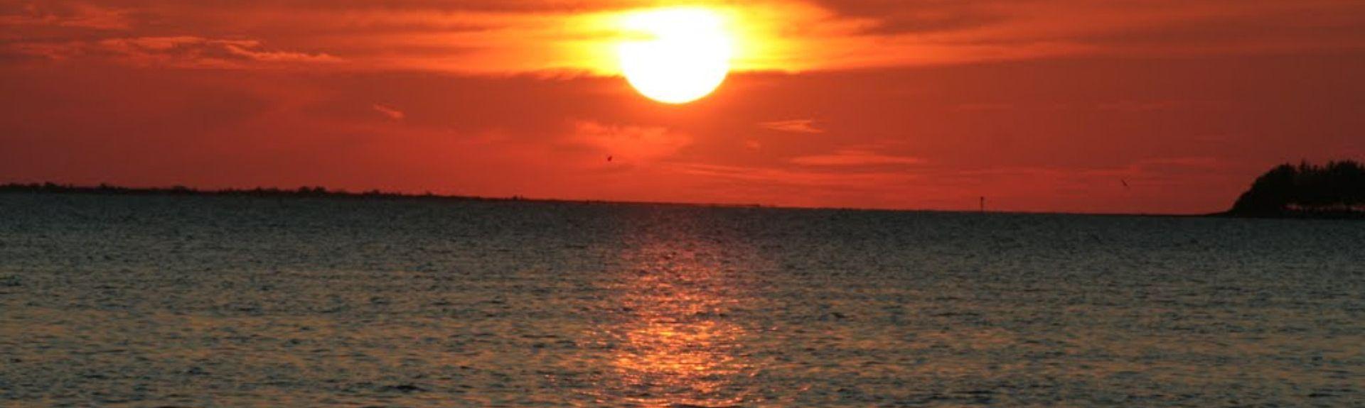Trinity, Florida, United States of America