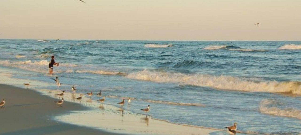 The Landing, Gulf Shores, AL, USA