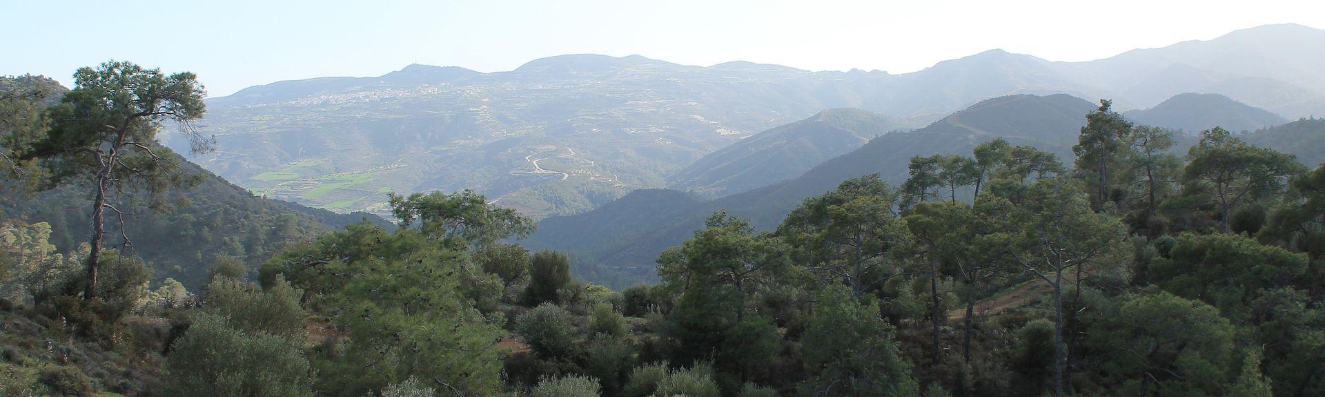 Pentakomo, Πεντάκωμο, Λεμεσός, Κύπρος
