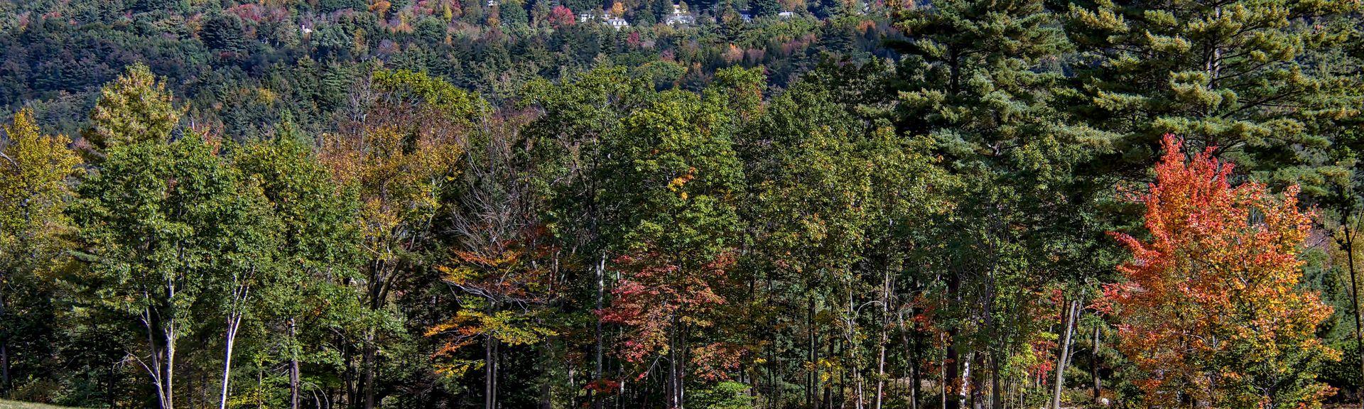 Greenfield, New Hampshire, Vereinigte Staaten