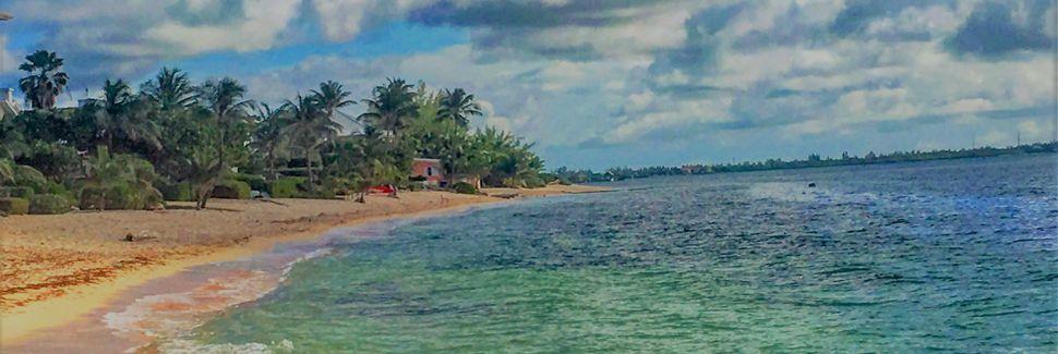 Starfish Beach, North Side, Grand Cayman, Cayman Islands