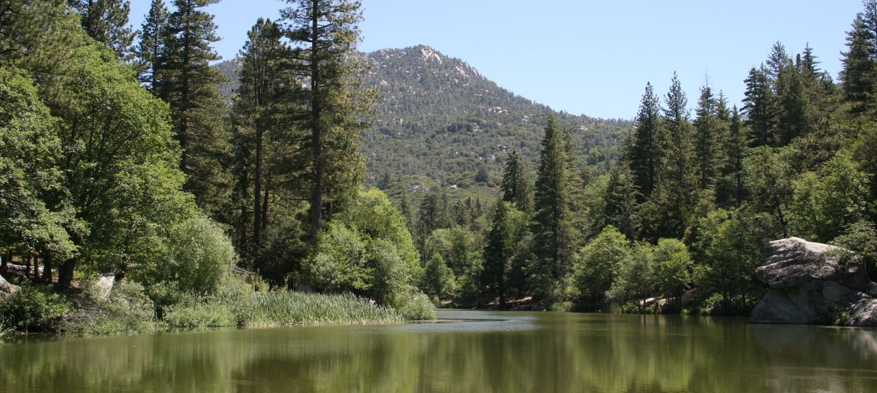 Idyllwild-Pine Cove, Kalifornien, Vereinigte Staaten