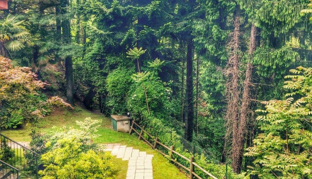 Bracchio, Verbano-Cusio-Ossola, Piedmont, Italy