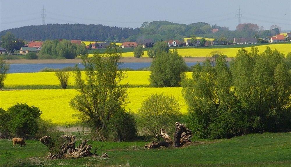 Neustadt-Glewe, Germany