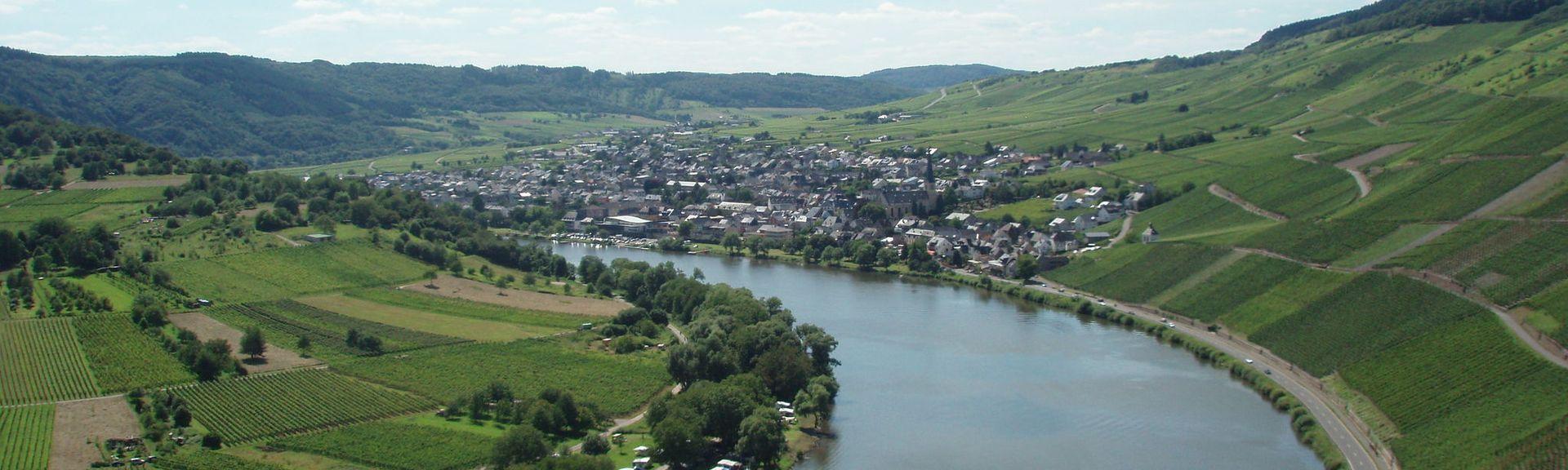 Leiwen, Rhineland-Palatinate, Germany