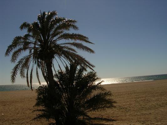 Campo de Cartagena y Mar Menor, Murcia, Spagna
