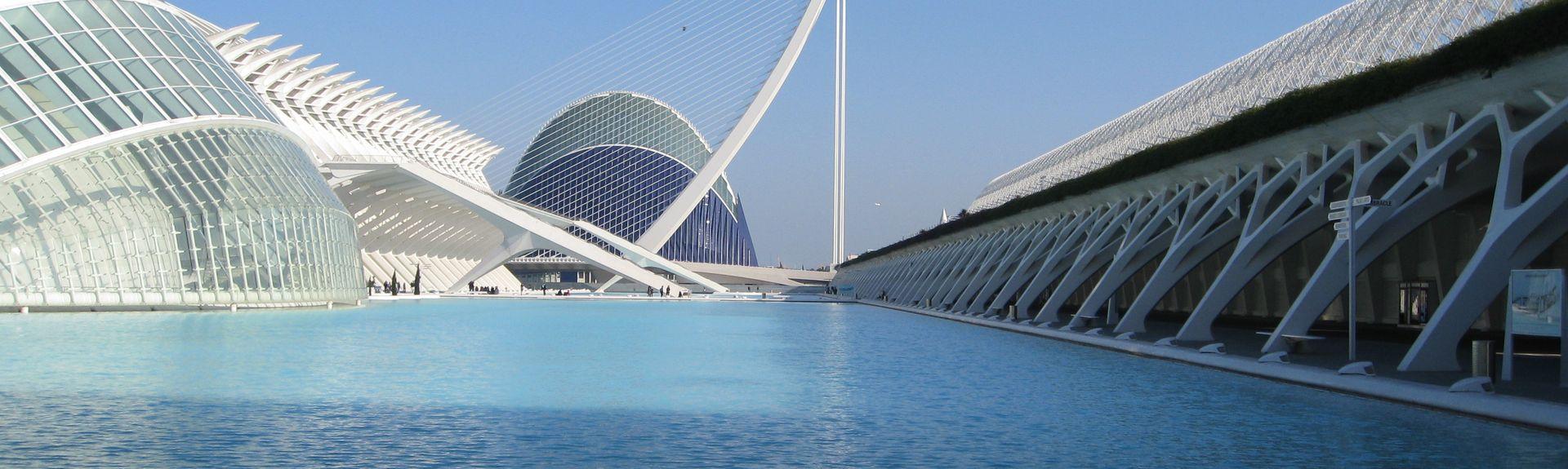 La Seu, València, Valencia, Spain