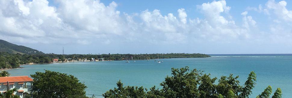 Cayey, Portoryko