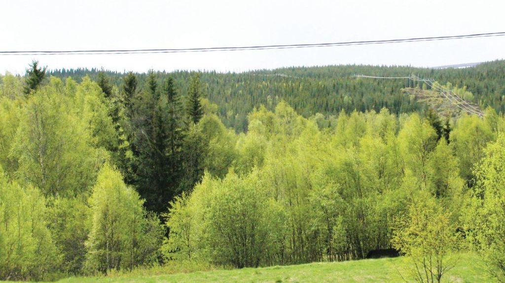 Stöten, Sälen, Dalarnas län, Sverige