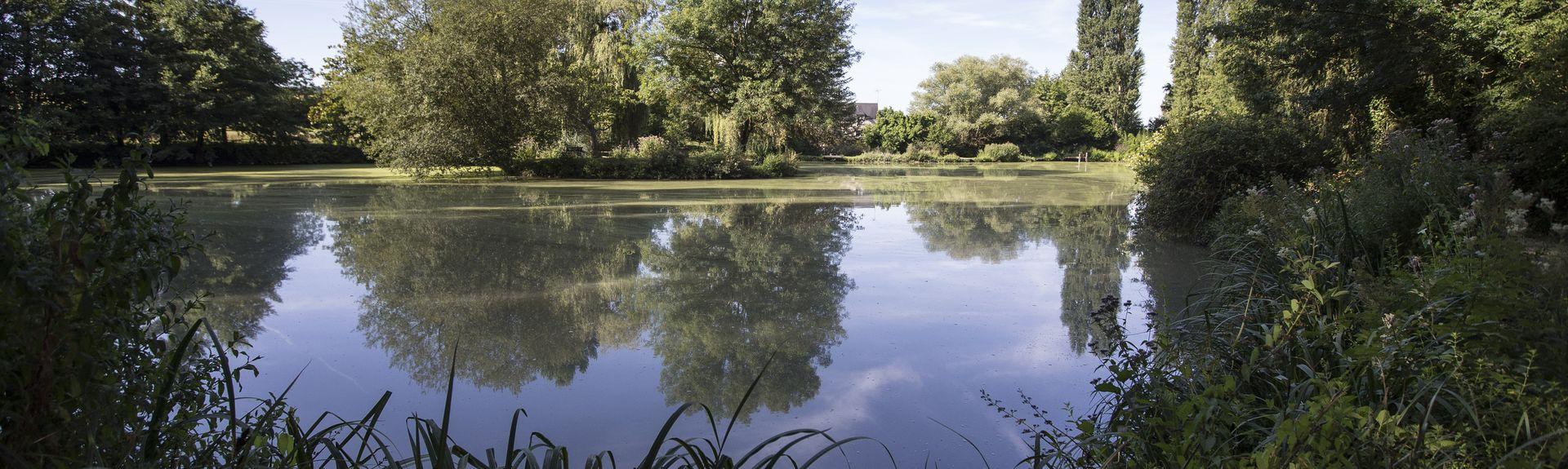 Verneuil-sur-Indre, Indre-et-Loire (département), France