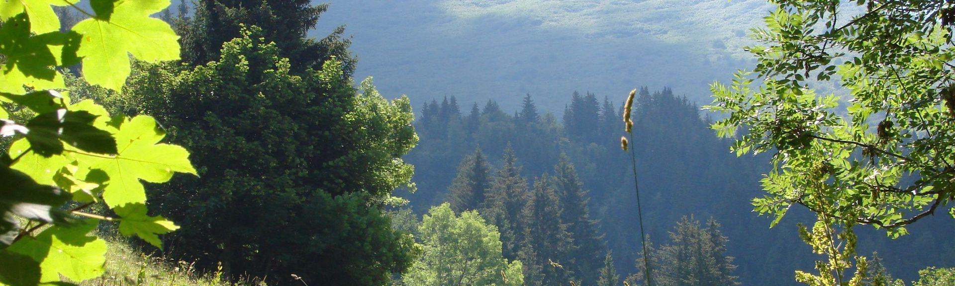 Doucy-Combelouviere, La Lechere, Auvergne - Rhône - Alpes, Frankrike