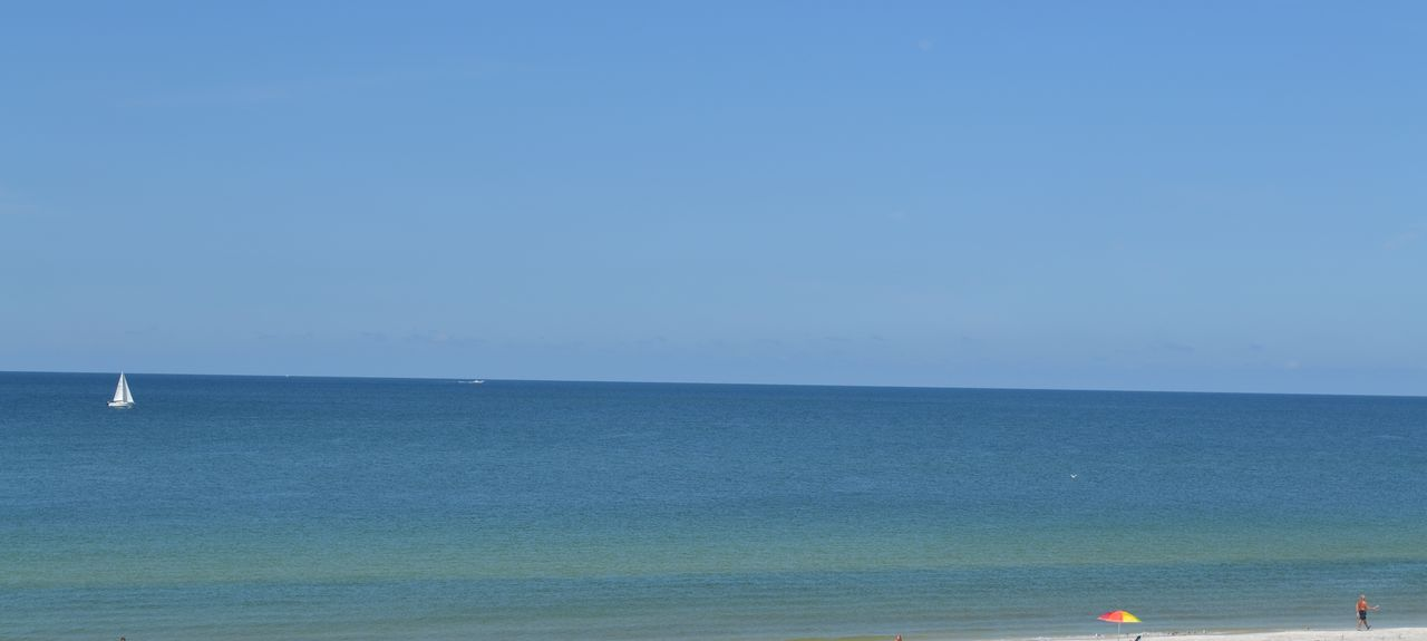 Sea Oats, Redington Beach, FL, USA
