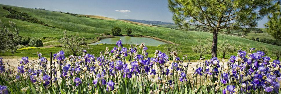 Seggiano, Toscane, Italie