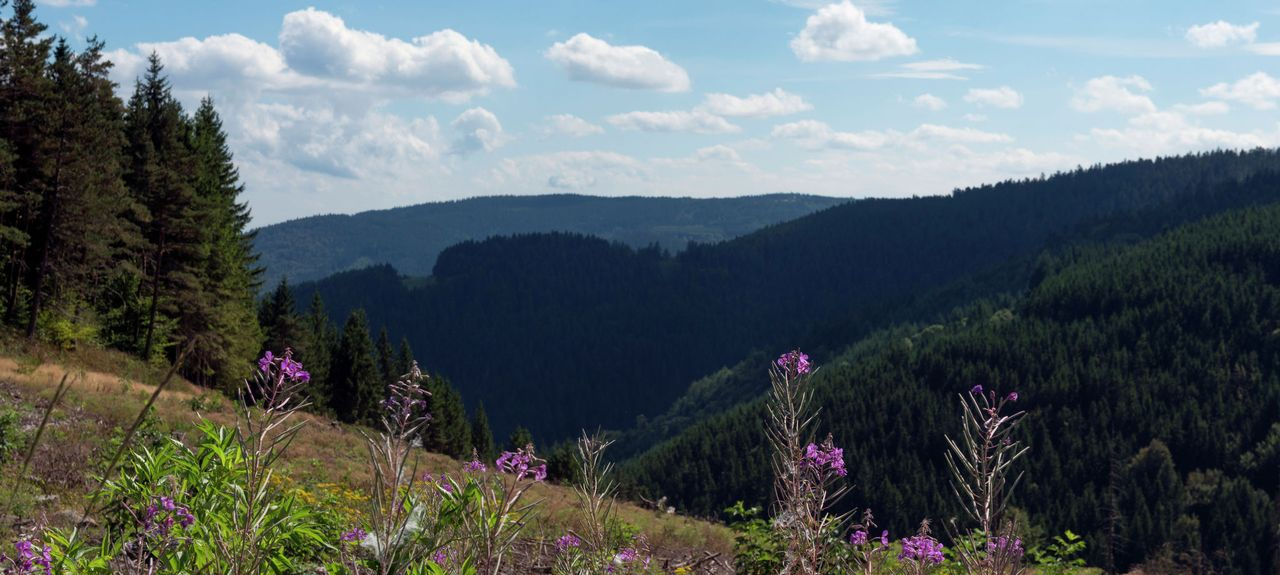 Villevocance, Auvergne-Rhône-Alpes, France