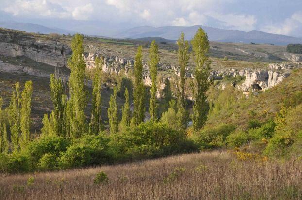 Odra-Pisuerga, Burgos, Spain