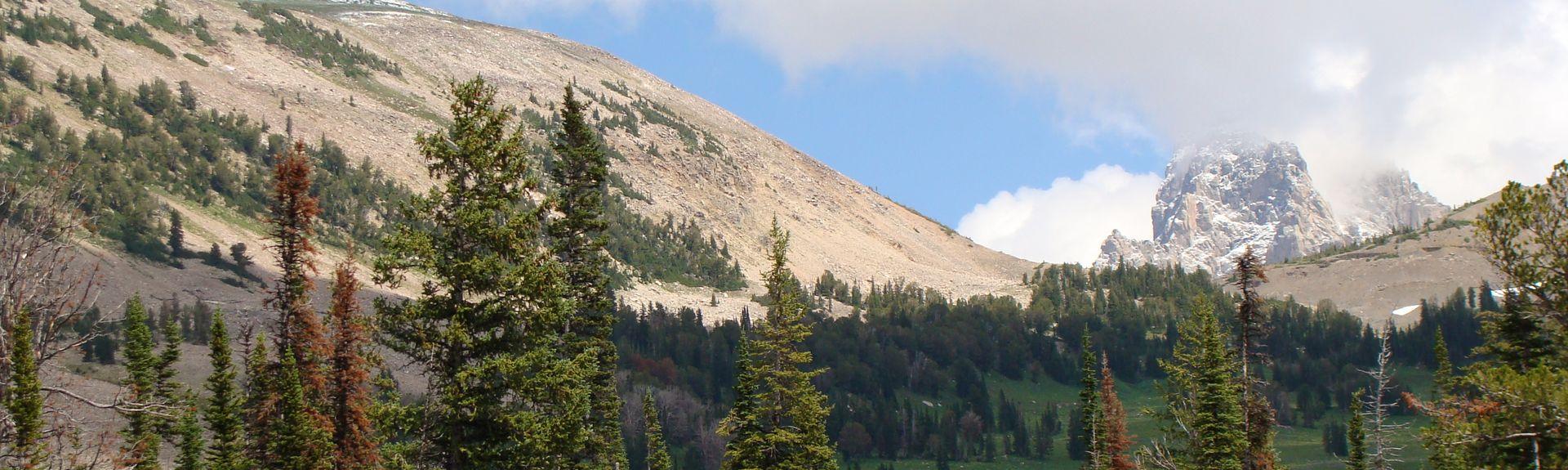 Alta, Wyoming, Estados Unidos