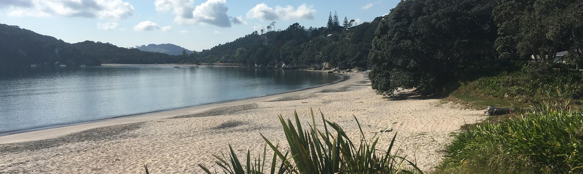 Hot Water Beach, Thames-Coromandel District, Waikato, New Zealand