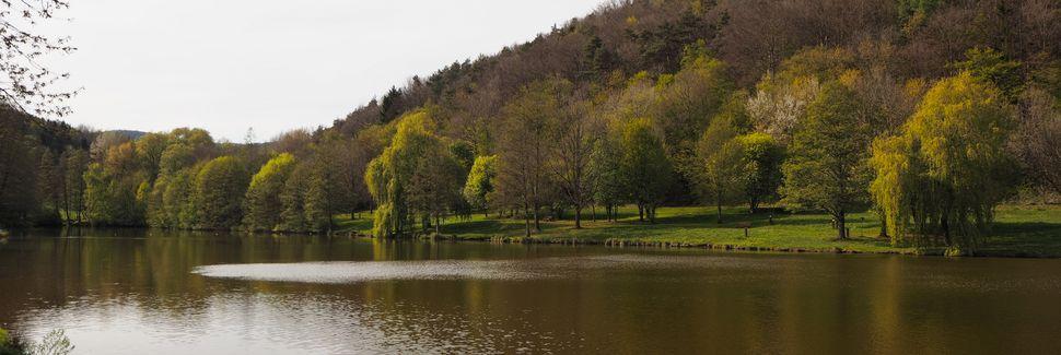 Feriendorf Eichwald, Gossersweiler-Stein, Rhineland-Palatinate, Allemagne