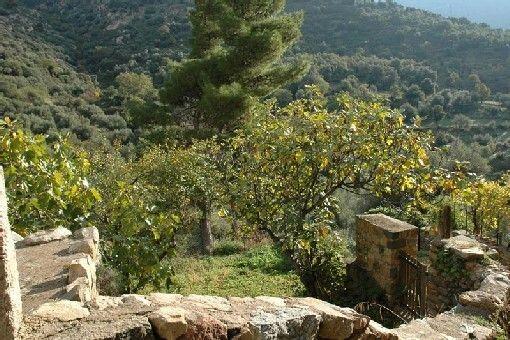 Monticello, Corsica, France