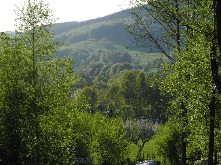 Jeuxey, Grand Est, Frankreich