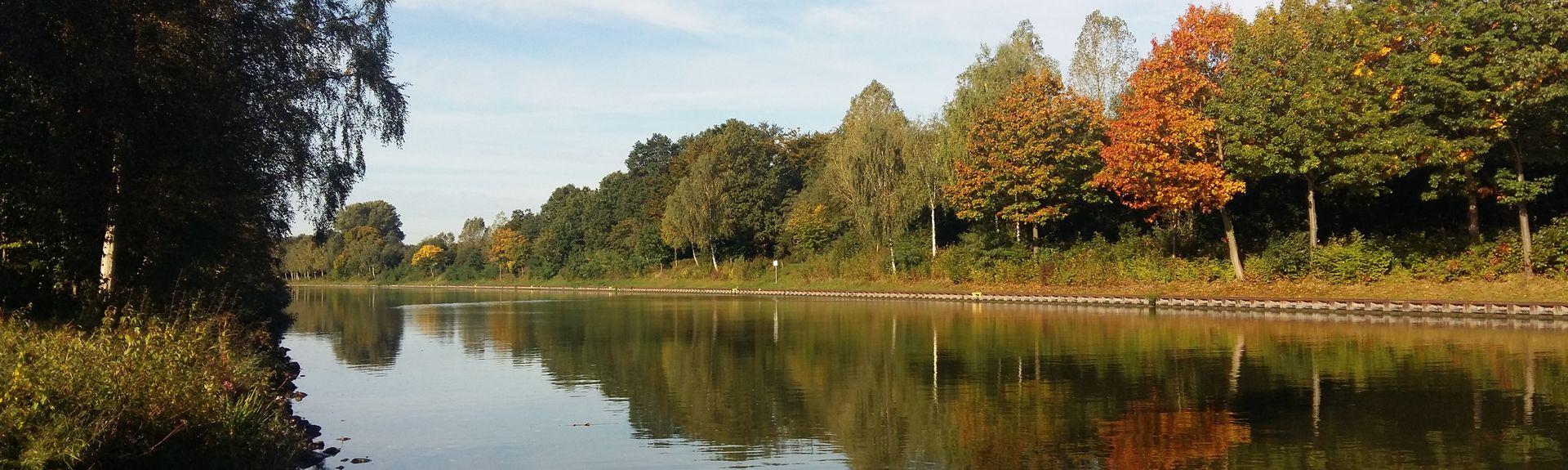 Münster, Rhénanie du Nord-Westphalie, Allemagne