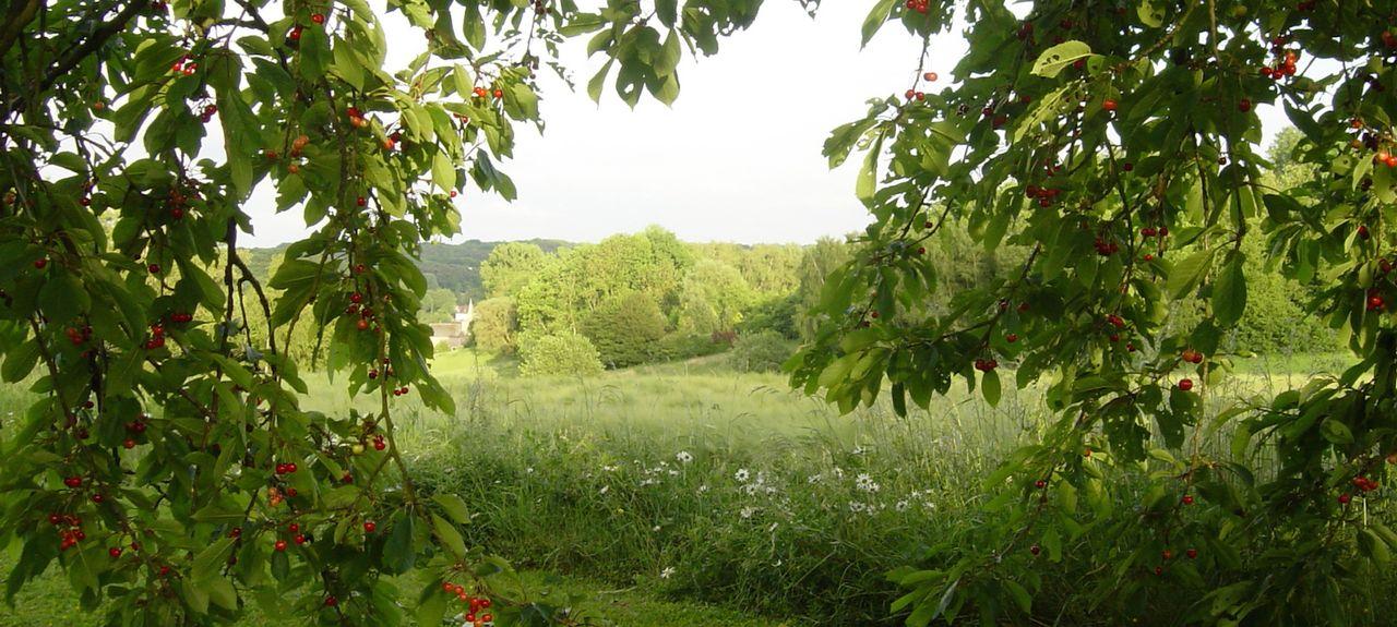 Ottignies-Louvain-la-Neuve, Région wallonne, BE
