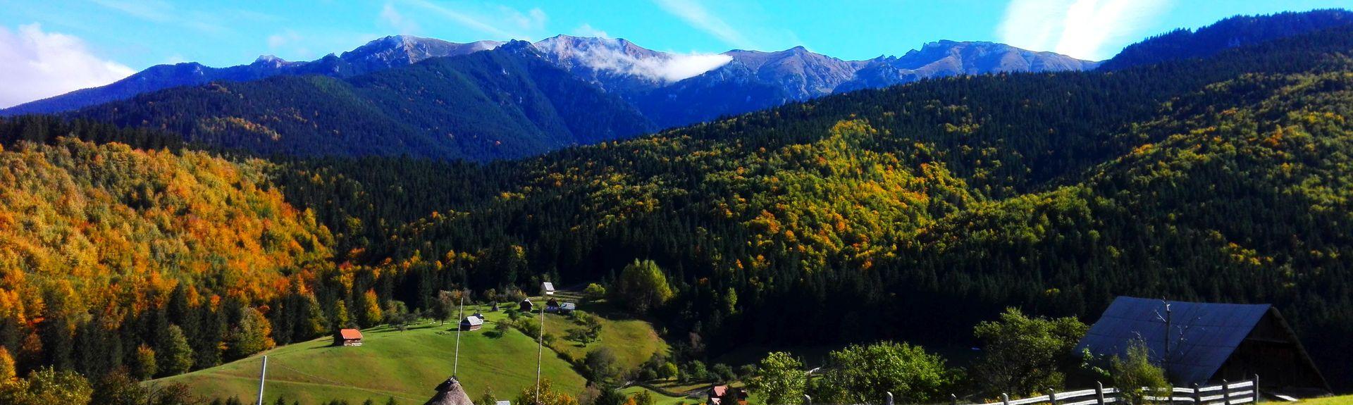 Brașov County, Romania