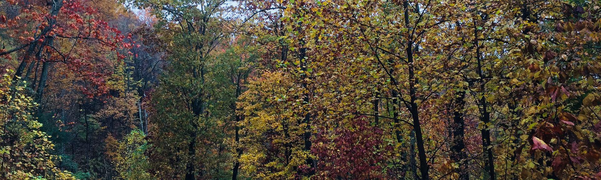 Moravian Falls, North Carolina, USA