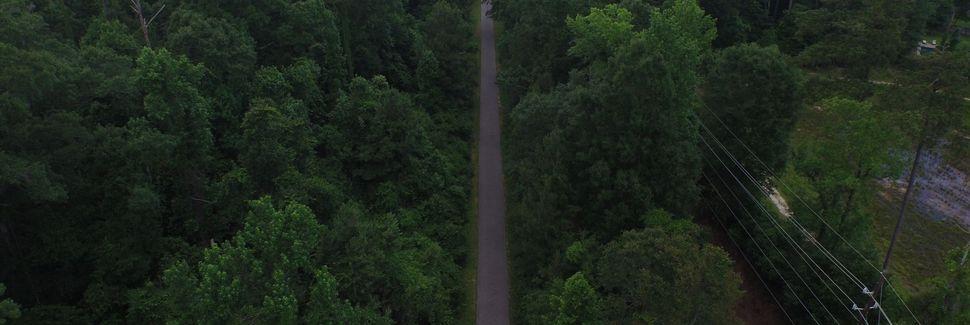 Springfield, Louisiana, Yhdysvallat
