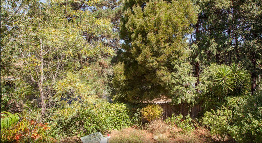 Vrbo | San Ramon, CA Vacation Rentals: house rentals & more