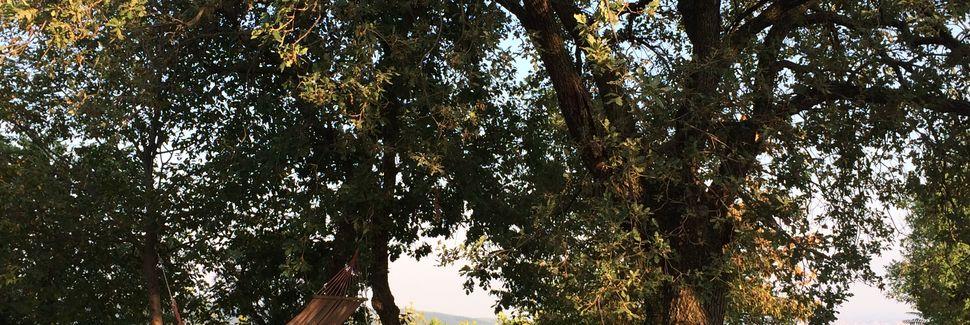 Mondragon di Sotto, Veneto, Italien
