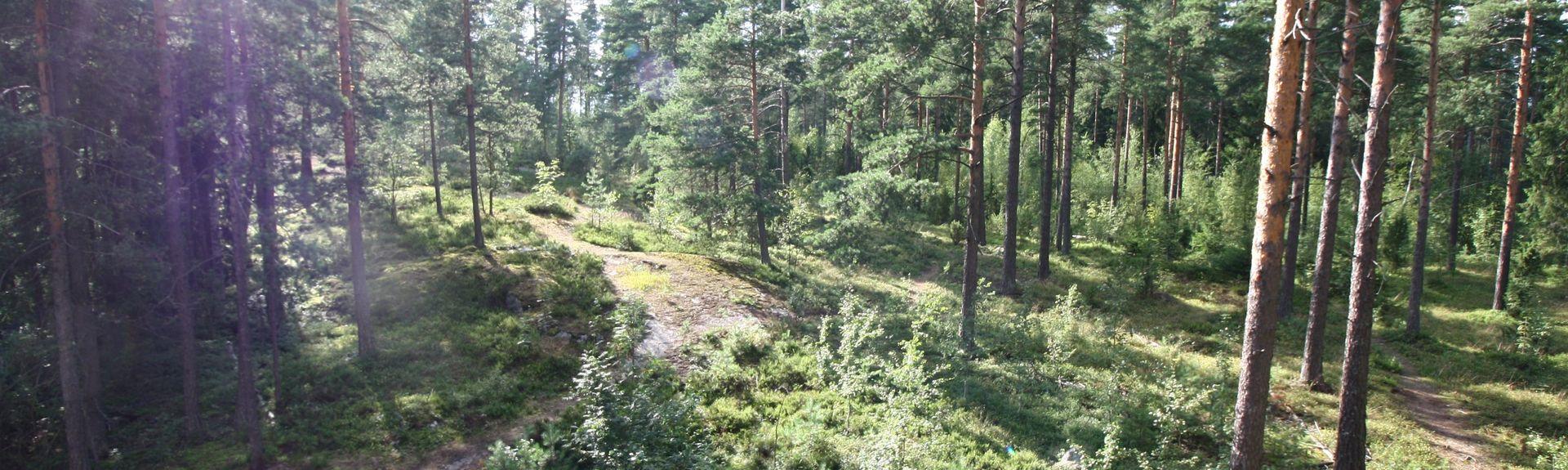 Espoo, Uusimaa, Finnland