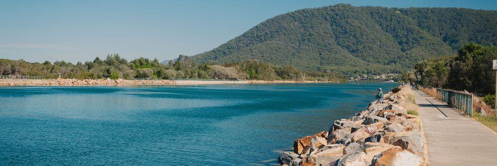Macquarie Nature Reserve, Port Macquarie, New South Wales, Australia