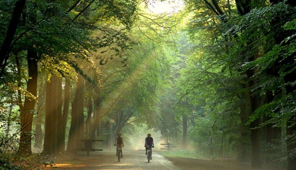 Zeist, Utrecht, Holandia