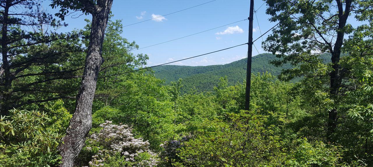 Pisgah National Forest, Nebo, North Carolina, United States