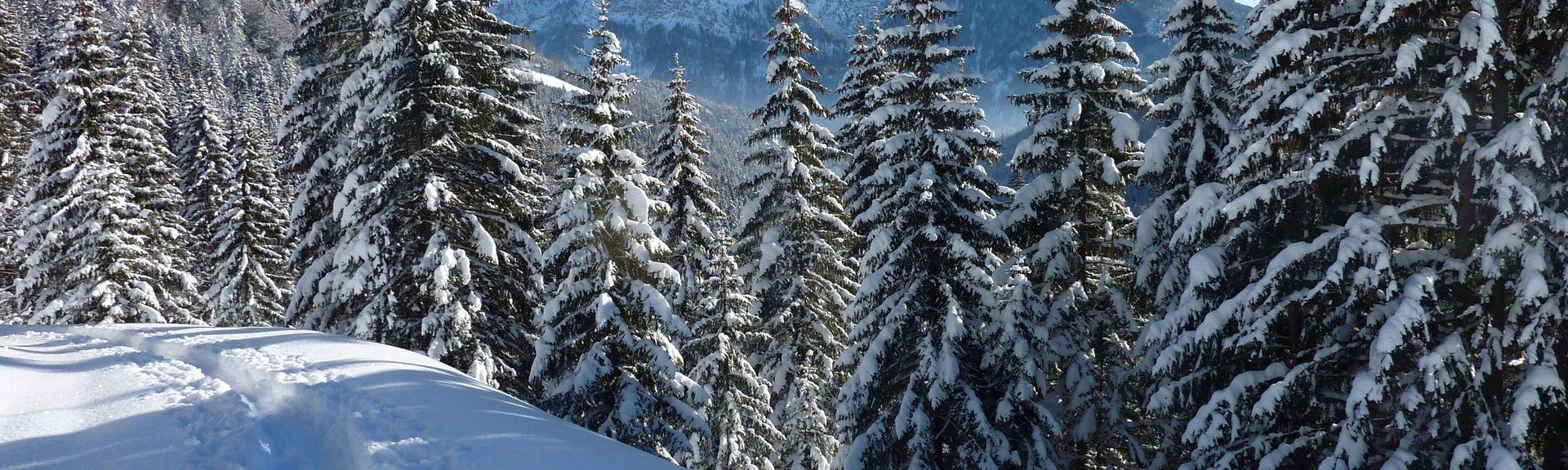 District de Kufstein, Tyrol, Autriche