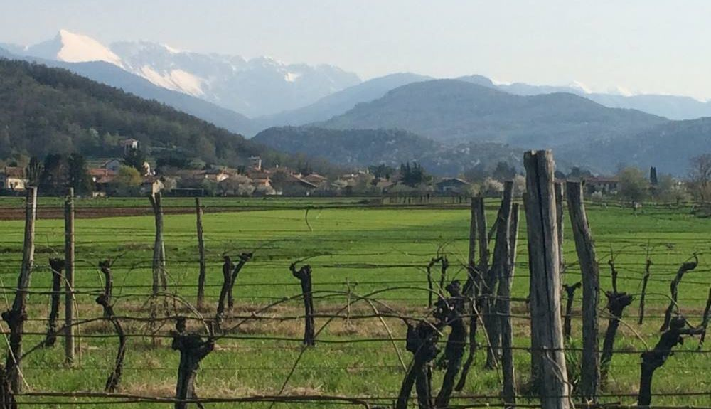 Pozzuolo del Friuli, Province of Udine, Friuli-Venezia Giulia, Italy