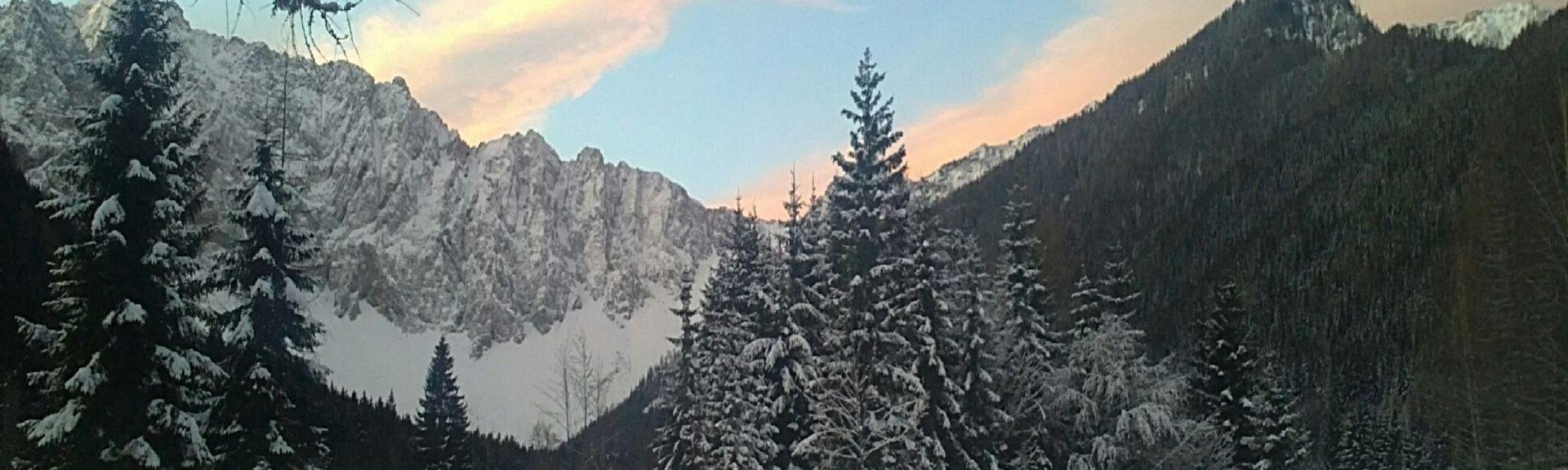 Zell, Kärnten, Itävalta