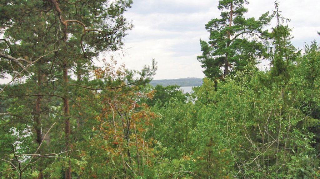 Dalsland, Västra Götalands län, Sverige