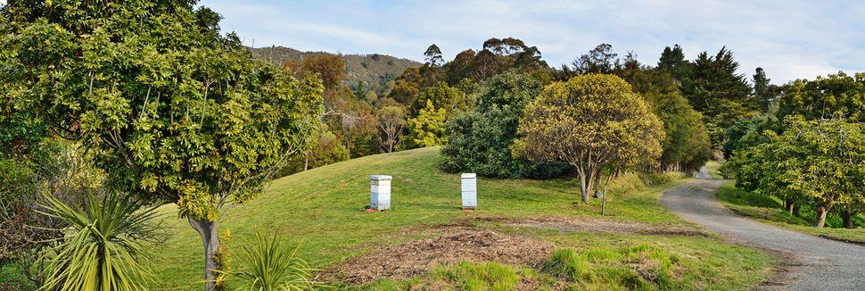 Marlborough District, Marlborough, South Island, New Zealand