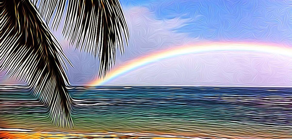 Haleiwa Surf, Haleiwa, HI, USA