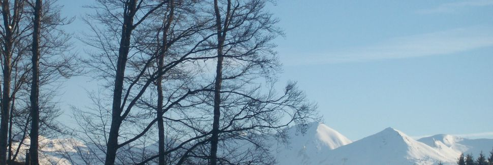 Saint-Amandin, Auvergne-Rhône-Alpes, Frankrike