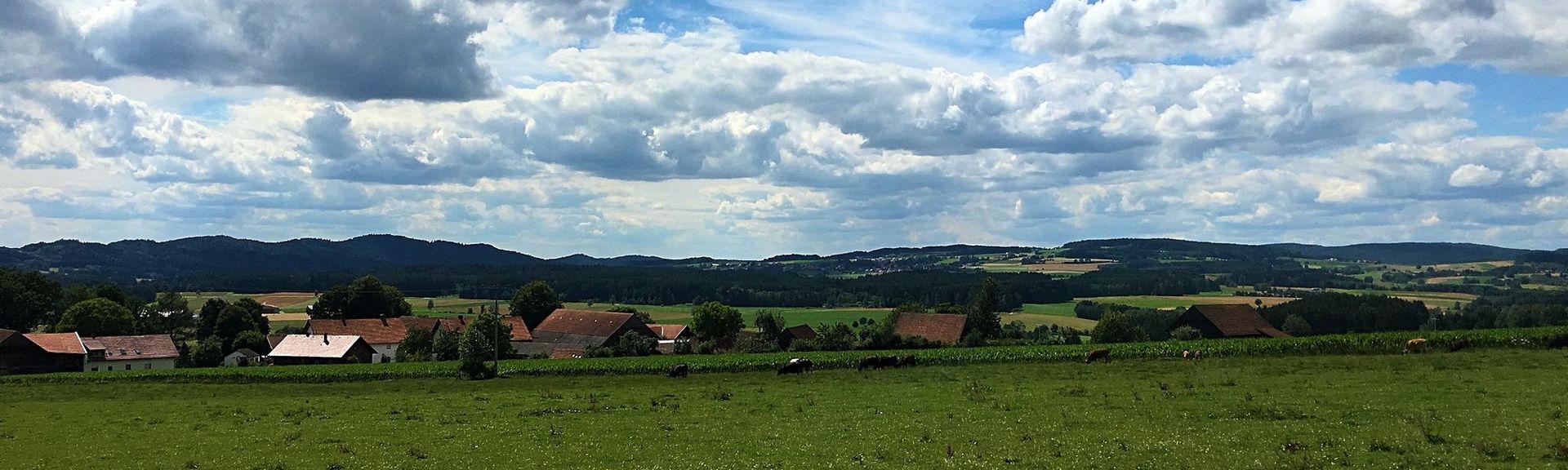 Neukirchen-Balbini, Germany