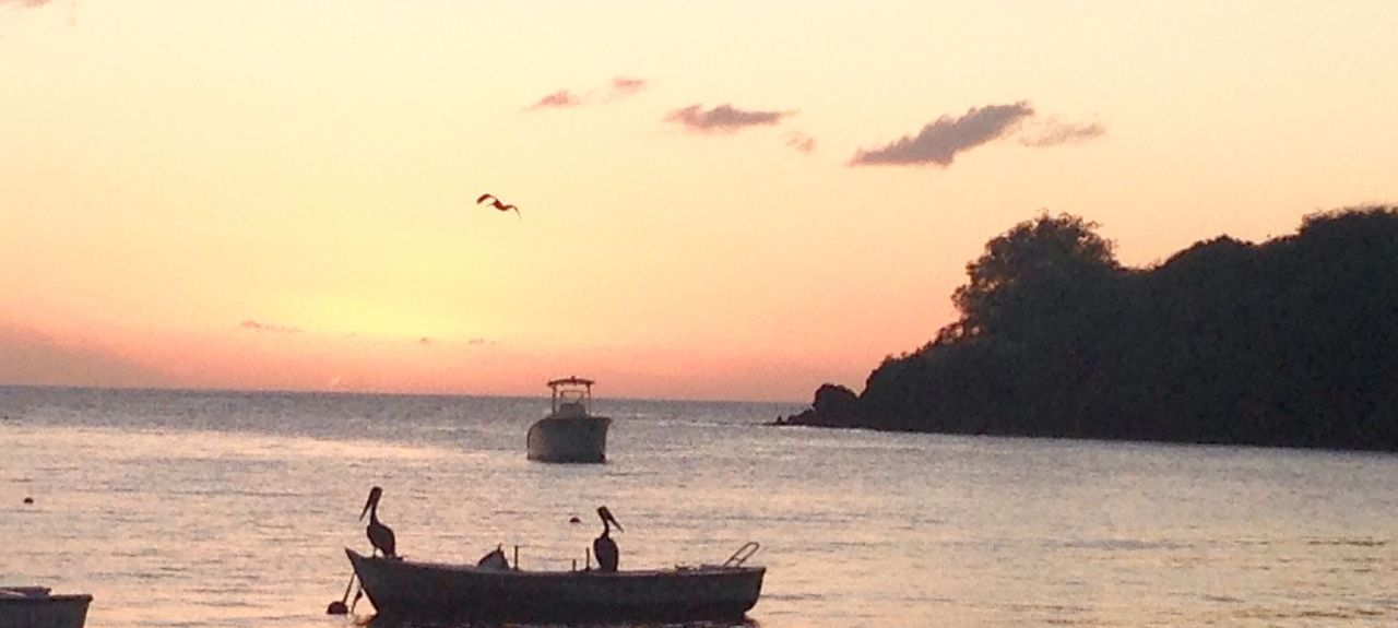 Plage de Malendure, Basse Terre, Guadeloupe