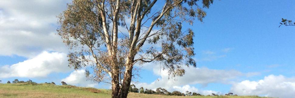 Geelong West VIC, Australia